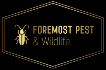 Foremost Pest & Wildlife
